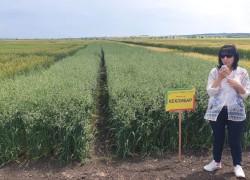 """""""Иновации во земјоделието"""" во Карнобат"""
